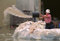 Holding back Mississippi River Flood Waters in 1994.